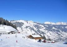 Die Winkleralm in Saalbach | Herzlich Willkommen auf der Alm am Zwölferkogel!